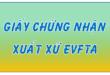 Hướng Dẫn Kê Khai C/O Mẫu EUR.1 Của Việt Nam