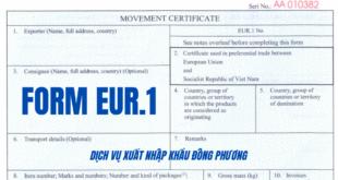 Anh dai dien form EUR1